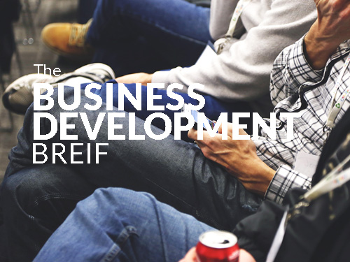 Business Development Brief